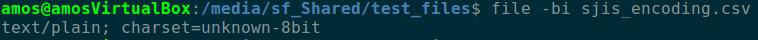 file -bi command and return result